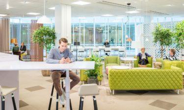 Lo que necesitas saber sobre Office 365
