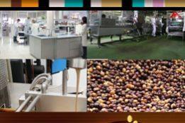 Imagen de la noticia Tutorial 2. Diseño Básico (Tablas y Pages) de Microsoft...
